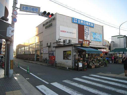 Kitano3.JPG