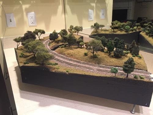 Widefield-Trees-1.JPG