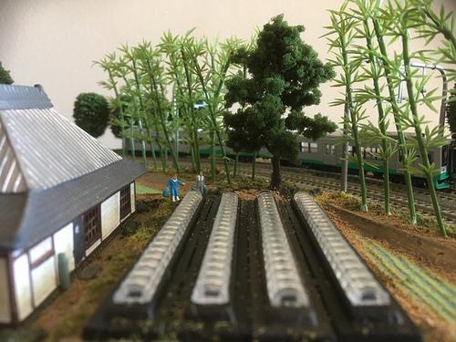 RiceFarmCorner2.jpg